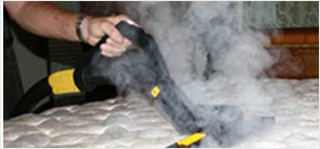 heat cleanning with dry steam for bed bugs
